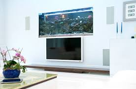 Where To Place Tv In Living Room Where To Place The Fish Tank In The House