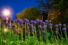 best views of boston eleanor grace photography
