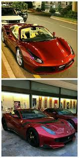 Lamborghini Veneno Custom - 674 best exotic cars images on pinterest dream cars car and