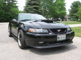 2003 Black Mustang Clay Bar U003d Shiny Black Paint Ford Mustang Forum