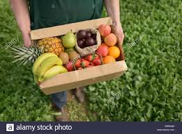 organic fruit delivery fruit delivery stock photos fruit delivery stock images alamy