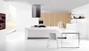 copious white finished wooden kitchen cabinet set also wood floors