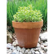 planting pots for sale pottery products high quality pottery for independent garden