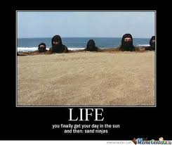 Sand Meme - life you finally get your day in the sun and then sand ninjas meme