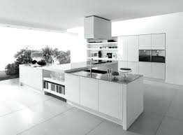 Contemporary White Kitchen Cabinets Modern White Cabinets Kitchen Dragtimes Info