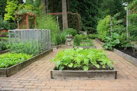 backyard vegetable garden ideas inspiration small backyard