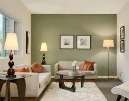Best  Olive Green Walls Ideas On Pinterest Olive Kitchen - Modern color schemes for living rooms