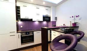 meuble de cuisine aubergine peinture element cuisine meuble cuisine aubergine by