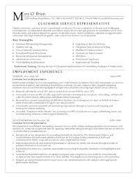 high resume exles skills browse sle resumes for customer service representative customer