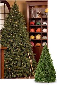 Wholesale Christmas Decorations Atlanta Ga by Commercial Christmas Trees Wintergreen Corporation