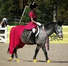 Horse Rider Halloween Costume 108 Horse Rider Costumes Images Costume