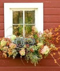 Window Boxes Planters by 8 Beautiful Window Box Planter Ideas Transitional Windows