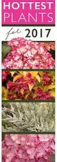 102 best 2017 spring garden images on pinterest monrovia plants