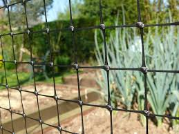 extruded anti bird netting for orchard vineyard and vegetable garden