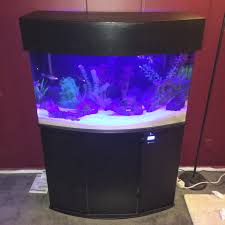46 gallon bow front acrylic aquarium set up and canopy build by