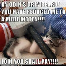 Mere Cat Meme - thor meme 001 reduced to a mere kitten comics and memes