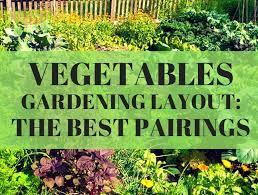 vegetable gardening layout the best pairings loyalgardener