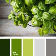 best 25 color palette green ideas on pinterest green palette