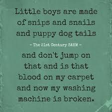 Raising Boys Meme - 26 hilarious memes that perfectly nail the struggle of raising boys