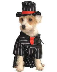 Dogs Halloween Costume Buy Funny Dog Costumes Cute Puppy Costumes Guaranteed