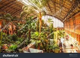madrid spain march 12 tropical green stock photo 187925276