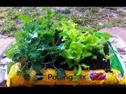 great preparing a vegetable garden preparing a vegetable garden