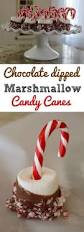 easy recipe chocolate dipped marshmallow candy canes