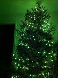 andrea s photo green tree
