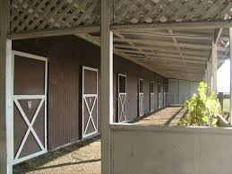 Shed Row Barns For Sale 33 Best Shedrow Barns Images On Pinterest Dream Barn Horse