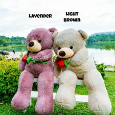s day teddy bears s day teddy the gift for him