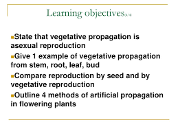 sexual reproduction of the flowering plant ppt download