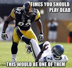 Steelers Meme - steeler meme thread