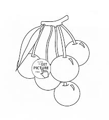 cherries fruits coloring page for kids fruits coloring pages