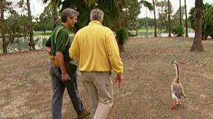 100 huell howser volcano house cooperative housing kcet