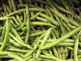 Types Of Garden Beans - warm season vegetables u2013 phelan gardens