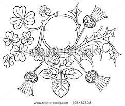 ornate frame clover thistle vector stock vector 306487808