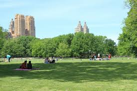 best nyc parks for walking having a picnic and playing sports