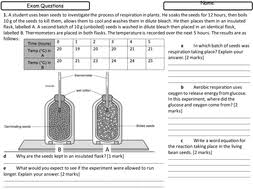 photosynthesis respiration and homeostasis worksheets new gcse