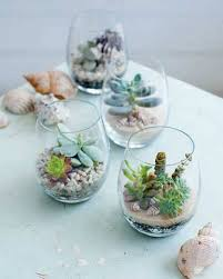 the best awesome ideas diy indoor succulents plant garden no 30