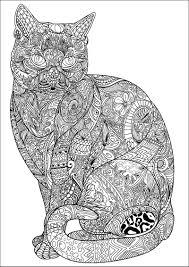 mes albums de coloriage 6 chat pinterest mandala