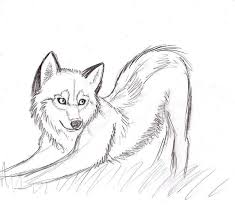 easy wolf sketches sketch coloring page