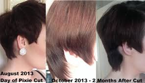 nine months later its a bob from pixie cut to bob haircut pixie growth 2 month update youtube