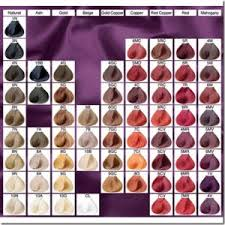 the matrix haircut best 25 matrix color chart ideas on pinterest matrix hair color