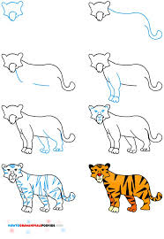 photos how to draw a tiger drawing gallery