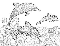 printable dolphin images printable dolphin coloring pages dolphin coloring pages for adults