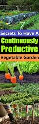 Bag Gardening Vegetables by 1817 Best Gardening Images On Pinterest
