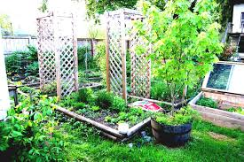 home vegetable garden ideas planner layout design plans for small