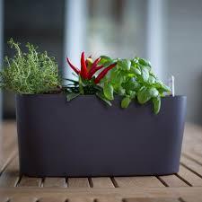 herb pots for windowsill rectangular pots u0026 planters lowe u0027s canada