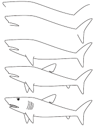 drawing shark finally easy directions boy loves