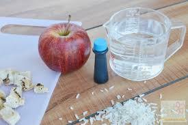 disney pirate fairy blue pixie dust rice recipe brie brie blooms